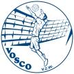 VOSCO logo def